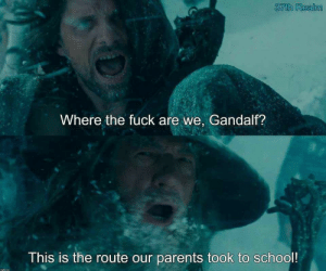 And uphill both ways: 37th Realm  Where the fuck are we, Gandalf?  This is the route our parents took to school! And uphill both ways