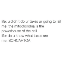 Funny, Jail, and Life: life: u didn't do ur taxes ur going to jail  me: the mitochondria is the  powerhouse of the cell  life: do u know what taxes are  mee: SOHCAHTOA