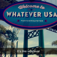 It's the fucking Catalina wine mixer. We're at @budlight's WhateverUSA this weeeeekend follow us on snapchat to see how drunk we get. 👊🏻 THE_BETCHES: Welcome  WHATEVER USA  UP FOR WHATEVER  It's like whatever It's the fucking Catalina wine mixer. We're at @budlight's WhateverUSA this weeeeekend follow us on snapchat to see how drunk we get. 👊🏻 THE_BETCHES