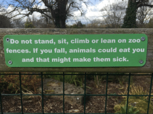 Animals, Fall, and Irish: 3Do not stand, sit, climb or lean on zoo  fences. If you fall, animals could eat you  and that might make them sick. This Irish zoo sign.