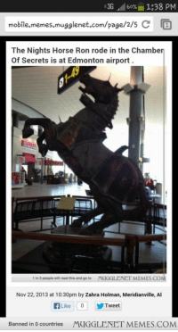 "Memes, Horse, and Http: -3G ..d 60%  1:38 PM  mobile,memes,mugglenet.com/page/2/5  The Nights Horse Ron rode in the Chamber  Of Secrets is at Edmonton airport  1 in 3 people will read this and go to MUGGLENET MEMES.COM  Nov 22,2013 at 10:30pm by Zahra Holman, Meridianville, Al  fLike 0 Tweet  Banned in 0 countries  MUGGLENET MEMES.COM <p>Anyone else see the problem with this picture? <a href=""http://ift.tt/1Dz3jlQ"">http://ift.tt/1Dz3jlQ</a></p>"