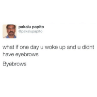 Funny, Ups, and Papito: pakalu papito  @pakalupapito  what if one day u woke up and u didnt  have eyebrows  Byebrows ✌️