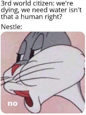 An interesting title: 3rd world citizen: we're  dying, we need water isn't  that a human right?  Nestle:  no An interesting title