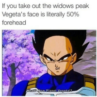 Damn lmao yell choppin my boy up: If you take out the widows peak  Vegeta's face is literally 50%  forehead  What? New Planet Vegeta Damn lmao yell choppin my boy up