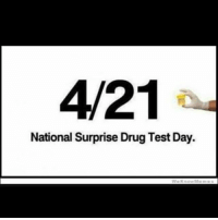 4/21  National Surprise Drug Test Day. watch yourself instagrammers