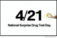 #funnyjokesquotespictures  ☺🙋   ***18+ #entertainment site***: 4/21  National Surprise Drug Test Day.  We Know Meme #funnyjokesquotespictures  ☺🙋   ***18+ #entertainment site***