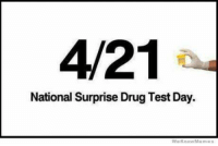Happy 4:20 Day! Here is a little salt for some of you!#iaoh: 4/21  National Surprise Drug Test Day.  We Know Meme Happy 4:20 Day! Here is a little salt for some of you!#iaoh