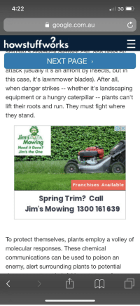 Jims Mowing