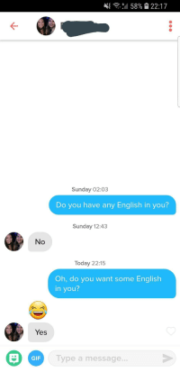 Gif, Today, and Sunday: 4{ ,4 58% 22:17  Sunday 02:03  Do you have any English in you?  Sunday 12:43  No  Today 22:15  Oh, do you want some English  in you?  Yes  GIF  Type a message. Culture vulture