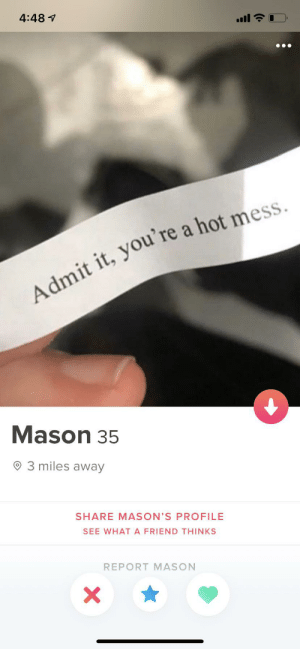 I feel attacked: 4:48 1  Admit it, you're a hot mess.  Mason 35  O 3 miles away  SHARE MASON'S PROFILE  SEE WHATA FRIEND THINKS  REPORT MASON I feel attacked