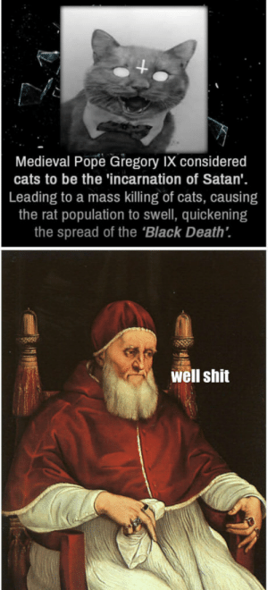 Cats, Pope Francis, and Shit: 4  Medieval Pope Gregory IX considered  cats to be the 'incarnation of Satan'  Leading to a mass killing of cats, causing  the rat population to swell, quickening  the spread of the 'Black Death.  well shit Checkmate Atheists!