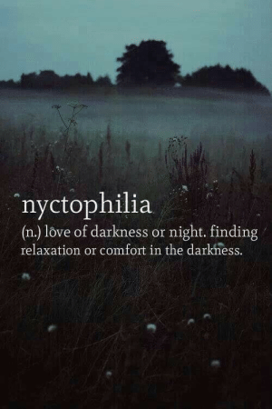 relaxation: 4%  nyctophilia  (n.) love of darkness or night. finding  relaxation or comfort in the darkness.