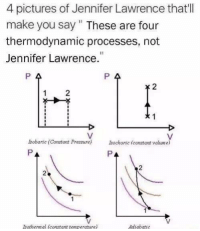Thermodynamics: 4 pictures of Jennifer Lawrence that'll  make you say These are four  thermodynamic processes, not  Jennifer Lawrence  P A  P 4  isobaric (Constant Pressure)  Bochorice constant volume)  ISothermal (constant temperature)  Adiabatic