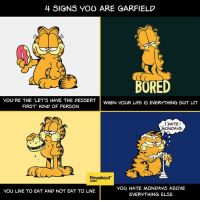 """Bored, Friends, and Life: 4 SIGNS YOU ARE BARFIELD  BORED  YOU'RE THE LET'S HAVE THE DESSERT  WHEN YOUR LIFE IS EVERYTHING BUT LIT  FIRST"""" KIND OF PERSON  I HATE  MONDAYS  Bewakoof  YOU HATE MONDAYS ABOVE  YOU LIVE TO EAT AND NOT EAT TO LIVE  EVERYTHING ELSE This Garfield day, We at Bewakoof are all set to honour things related to ginger feline. Are you?  Also don't forget to tag those friends who are 'purrfect' Garfield's!"""