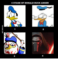 donald duck: 4 STAGE OF DONALD DUCK ANGER  2  3  4  VIA 9GAG.COM