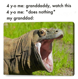 me_irl: 4 y-o me: granddaddy, watch this  4 y-o me: *does nothing*  my granddad: me_irl