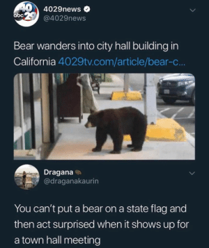 Smokey tryna talk about all those fires: 40 4029news  abc @4029news  Bear wanders into city hall building in  California 4029tv.com/article/bear-c..  Dragana  @draganakaurin  You can't put a bear on a state flag and  then act surprised when it shows up for  a town hall meeting Smokey tryna talk about all those fires