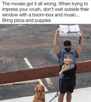 41 Pics and Memes to Rule The Day #funny #memes #wow #wtf #dank #lol #pics #fyp: 41 Pics and Memes to Rule The Day #funny #memes #wow #wtf #dank #lol #pics #fyp