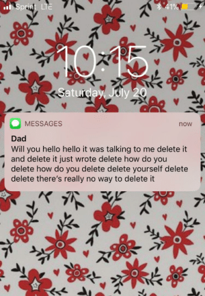 My gf's dad got his first iPhone. This is him trying to message her using speak-to-text: 41%  Sprint LTE  Saturday, July 20  MESSAGES  now  Dad  Will you hello hello it was talking to me delete it  and delete it just wrote delete how do you  delete how do you delete delete yourself delete  delete there's really no way to delete it My gf's dad got his first iPhone. This is him trying to message her using speak-to-text