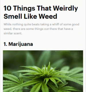 420 blaze it by Ultracrepadarian MORE MEMES: 420 blaze it by Ultracrepadarian MORE MEMES