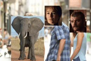 44 Brand Spankin' New Game of Thrones Season 8 Memes: 44 Brand Spankin' New Game of Thrones Season 8 Memes
