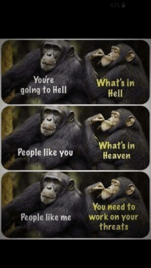 Heaven, Work, and Hell: 45%  Youre  What's in  Hell  going to Hell  What's in  Heaven  People like you  You need to  work on your  threats  People like me ugh