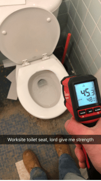 Funny, Lord, and Seat: 453  430  AX  Worksite toilet seat, lord give me strength