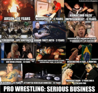 Serious Business...: facebook.com/wrestling memes  KIDNAPAND FALSE  ARSON-10 YEARS NECROPHILIA 4YEARS OMPRISONMENT-8 YEARS  POSSESSION OFAFIREARM WITH INTENT  TERRORISM-LIFE SENTENCE GRAND THEFT AUTO-3 YEARS  TO ENDANGER LIFE LIFE SENTENCE  POSSESSION OFAC  SUBSTANCE  GRIEVOUSBODILYHARM WITH INTENTTOCAUSE  DESECRATING A FLAG-6MONTHS  AND DRINK SPIKING-10 YEARS  GRIEVOUSBODILY HARM-LIFESENTENCE  MARRIAGE FRAUD-5 YEARS AND A  BLACKMAIL 14 YEARSE ATTEMPTEDVEHICULAR HOMICIDE-20 YEARS  $250,000 FINE  PRO WRESTLING: SERIOUS BUSINESS Serious Business...