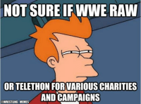 Meme, Memes, and Wrestling: NOT SURE IF WWE RAW  ORTELETHON FOR VARIOUS CHARITIES  AND CAMPAIGNS  @WRESTLING MEMES Susan G Komen, B A Star, Something about Malaria nets, the troops, learning to read if its wrestlemania season, I swear I start feeling guilty when I watch raw these days tongue emoticon