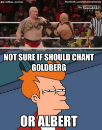 facebook.com/wrestlingmemes  @wrestling memes  Sky SPORTS  NOT SURE IFSHOULDCHANT  GOLDBERG  OR ALBERT Go check out our sponsor www.rudoreels.com who are currently having a 40% off Black Friday sale some good bargains! go like them at www.facebook.com/rudoreels - now if it was you which would you chant?