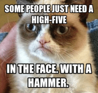 join Grumpy Cat. for more!: SOME PEOPLE JUST NEED A  HIGH-FIVE  IN THE FACE WITH A  HAMMER join Grumpy Cat. for more!