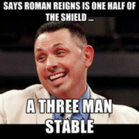 Roman Reigns: SAYS ROMAN REIGNS ISONE HALF OF  THE SHIELD  A THREE MAN  STABLE