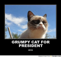 join Grumpy Cat. for more  ; ): GRUMPY CAT FOR  PRESIDENT  2016  MEMES & FUNNY PICS  FRABZ.COM join Grumpy Cat. for more  ; )