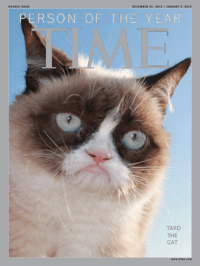 Cats, Grumpy Cat, and Smile: DECEMBER 31, 2012 JANUARY 7, 2013  ERSON OF THE YEAR  TARD  THE  CAT Grumpy Cat. smile emoticon
