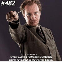 This fact comes from JK Rowling herself! In the books, she never actually explicitly states what Remus' Patronus is - we find out from that his Patronus is a wolf from her Pottermore writings. 💓 Follow @hpfashion934 and @forevermaddy_ 💓:  #482  ACTS  Remus Lupin's Patronus is actually  never revealed in the Potter books This fact comes from JK Rowling herself! In the books, she never actually explicitly states what Remus' Patronus is - we find out from that his Patronus is a wolf from her Pottermore writings. 💓 Follow @hpfashion934 and @forevermaddy_ 💓