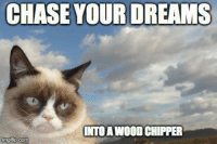 join Grumpy Cat. for more : ): CHASE YOUR DREAMS  IINTOA WOOD CHIPPER  img flip com join Grumpy Cat. for more : )