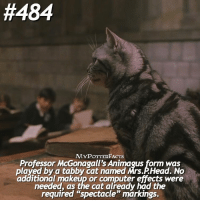"Computers, Makeup, and Memes:  #484  MYPOTTERFACTS  Professor McGonagall's Animagus form was  played by a tabby Cat named Mrs AHead. No  additional makeup or computer effects were  needed, as the cat already had the  required ""spectacle"" markings. = Like & Comment! Qotd: Do you have any pets? - ✨ Fact: Professor McGonagall's Animagus form was played by a tabby cat named Mrs.P.Head. No additional makeup or computer effects were needed, as the cat already had the required ""spectacle"" markings Source: Pottermore. = You can find me on @bookgasms @typedpotterquotes @iloveharrypotter9 and @valeriatouma 🚂⚡️"