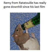 Remy From Ratatouille Has Really Gone Downhill Since His Last Film 1 Like 1 Prayer Ratatouille Meme On Me Me
