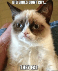 Join Grumpy Cat. for more ( :: BIGGIRLS DONT CRY...  THEY EAT Join Grumpy Cat. for more ( :