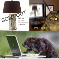 Wtf, Brother, and Shipping: $49.99  Buy It Novw  +$17.99 shipping  2 Watching  WTF BROTHER?