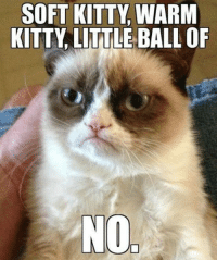 SOFT KITTY WARM  KITTY LITTLE BALL OF  NO, join Grumpy Cat. for more ( :