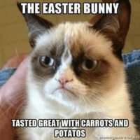 THE EASTER BUNNY  TASTEDGREATWITHCARROTSAND  POTATOS * Potatoes -__- Join Animal Memes. if you love animals and laughing smile emoticon