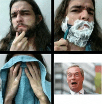 On all levels including physical, I am Nigel Farage  [votes out]
