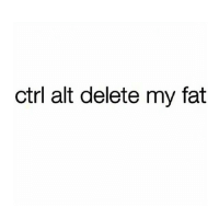 Funny, Twitter, and Fat: ctrl alt delete my fat If only it was this easy (Tinatbh on Twitter)