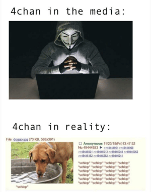 "*schlop*: 4chan in the media:  4chan in reality:  File: doggo ipg (73 KB, 588x391)  □ Anonymous 11/23/18(Fn)134752  No.4944492349444951 2249444968  2249445001 2249445013 2249445948 2249445952  49445152 2249445262  schlop ""schlop ""schlop ""schlop  schlop ""schlop schlop ""schlop  schlop schlop ""schlop ""schlop  schlop ""schlop ""schlop"" ""schlop  schlop ""schlop"" ""schlop ""schlop  schlop ""schlop"" ""schlop* ""schlop  schlop *schlop*"