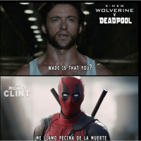 Haha hilarious meme by: @themightyclint avengers avengersmemes marvel marvelmemes marvelcomics deadpool deapoolmemes wolverine wolverinememes: MIG  M E  WOLVERINE  DEADPOOL  WADE IS THAT YOU?  ME LLAMO PECINA DE LA MUERTE Haha hilarious meme by: @themightyclint avengers avengersmemes marvel marvelmemes marvelcomics deadpool deapoolmemes wolverine wolverinememes