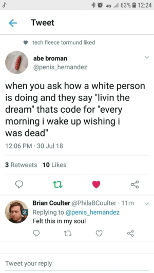 "meirl by Latricc MORE MEMES: 4G 63% 12:24  Tweet  tech fleece tormund liked  abe broman  @penis_hernandez  when you ask how a white person  is doing and they say ""livin the  dream"" thats code for ""every  morning I wake up wishing I  was dead""  12:06 PM 30 Jul 18  3 Retweets 10 Likes  Brian Coulter @PhilaBCoulter 11m v  Replying to @penis_hernande:z  Felt this in my soul  Tweet your reply meirl by Latricc MORE MEMES"