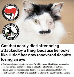 "Thug, Black, and Hitler: 4KTIO  Cat that nearly died after being  attacked by a thug 'because he looks  like Hitler"" has now recovered despite  losing an eye  . Baz has a distinctive patch of black fur which resembles Hitler's moustache  .He was blinded and left for dead in a bin after a brutal attack by thugs  Seven-year-old has recovered despite vets having to remove his left eye  His treatment cost £600 and people from all over the country sent donations Liberals mutilate a cat because ""cat looks like Hitler"""
