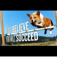 Good Morning Lebanon! Never forget to always believe in yourselves and you will be very successful! LebaneseMemes: 4LEBANESE MEMES  via LEBANESE MEMES Good Morning Lebanon! Never forget to always believe in yourselves and you will be very successful! LebaneseMemes