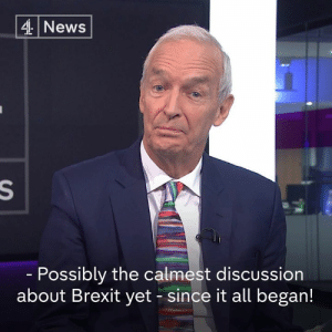 "Memes, Michael, and Pro: 4News  Possibly the calmest discussion  about Brexit yet -since it all began! ""We don't have a problem here, we have different emphasis.""  Author Michael Morpurgo, who wants to cancel Brexit, and pro-Leave historian Robert Tombs, have a refreshingly civilised disagreement over leaving the EU."